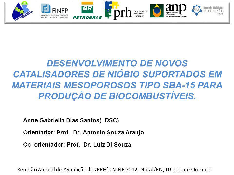 Anne Gabriella Dias Santos( DSC) Orientador: Prof. Dr. Antonio Souza Araujo Co–orientador: Prof. Dr. Luiz Di Souza DESENVOLVIMENTO DE NOVOS CATALISADO
