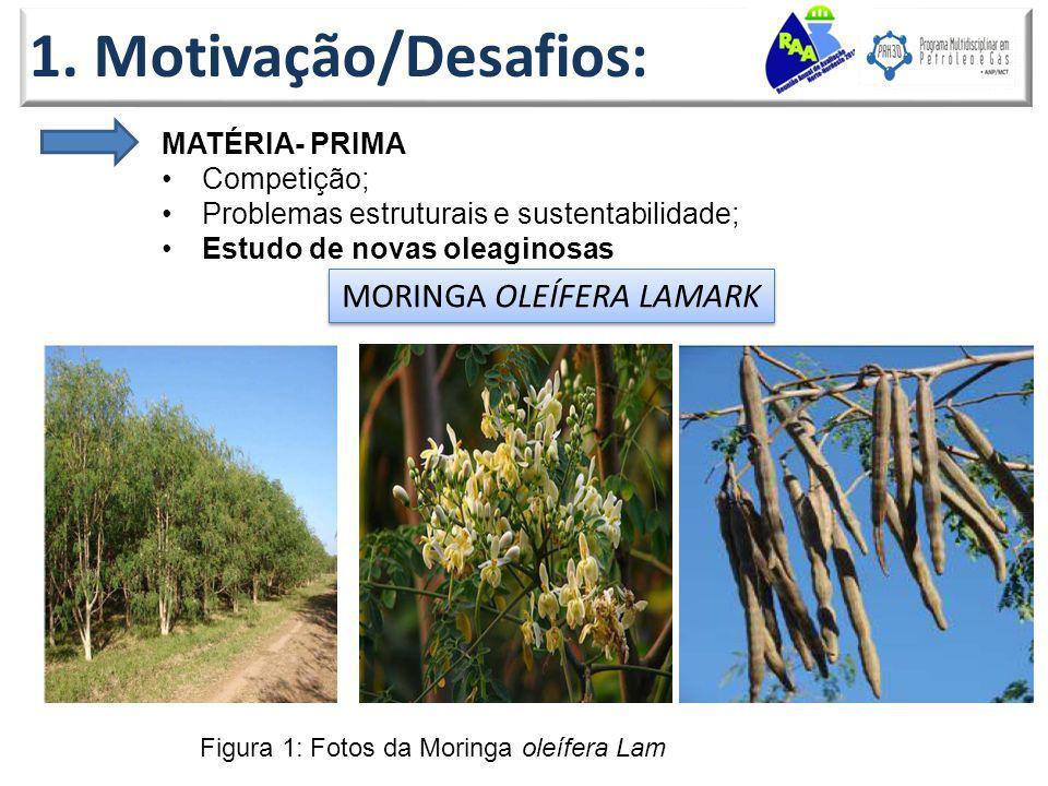1. Motivação/Desafios: MATÉRIA- PRIMA Competição; Problemas estruturais e sustentabilidade; Estudo de novas oleaginosas MORINGA OLEÍFERA LAMARK Figura