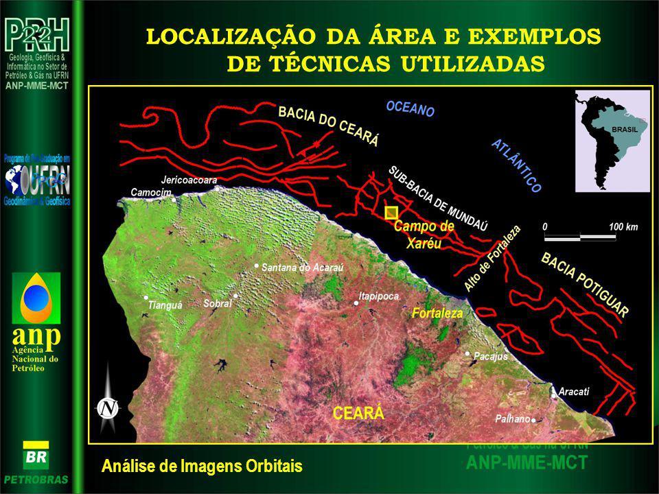 LOCALIZAÇÃO DA ÁREA E EXEMPLOS DE TÉCNICAS UTILIZADAS Análise de Imagens Orbitais