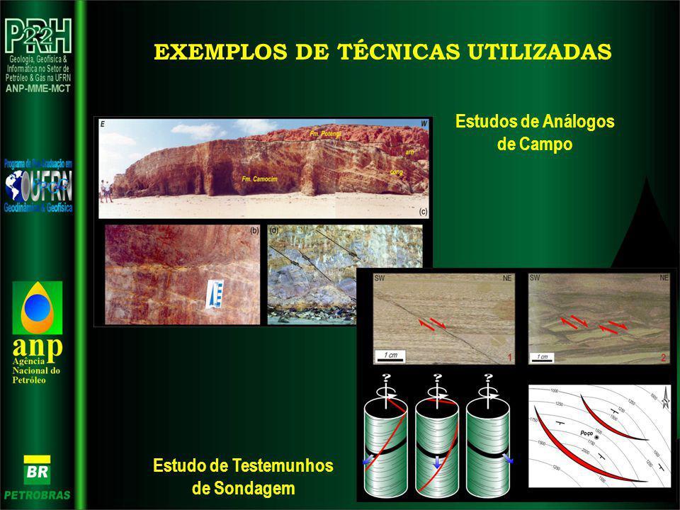 EXEMPLOS DE TÉCNICAS UTILIZADAS Estudos de Análogos de Campo Estudo de Testemunhos de Sondagem