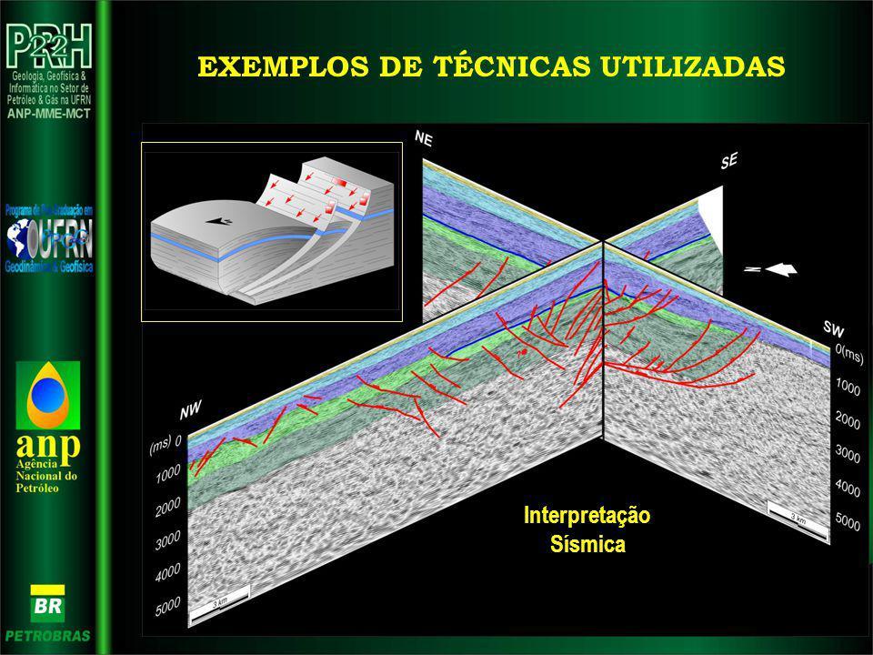 Interpretação Sísmica EXEMPLOS DE TÉCNICAS UTILIZADAS