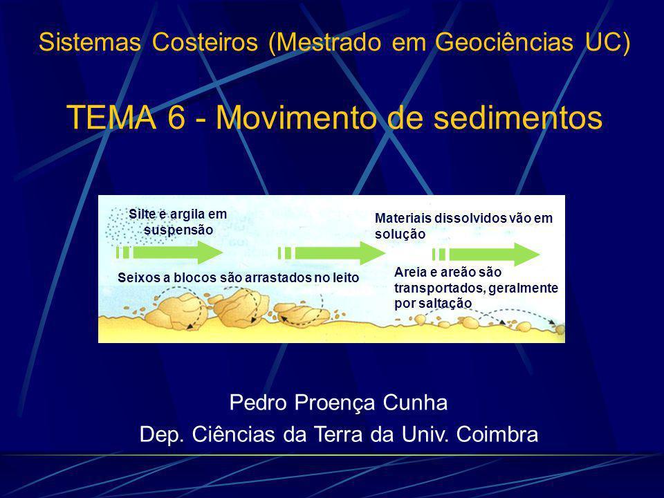 Sistemas Costeiros (Mestrado em Geociências UC) TEMA 6 - Movimento de sedimentos Pedro Proença Cunha Dep.
