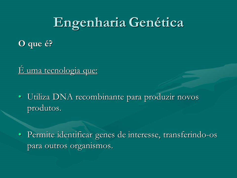 Engenharia Genética O que é? É uma tecnologia que: Utiliza DNA recombinante para produzir novos produtos.Utiliza DNA recombinante para produzir novos