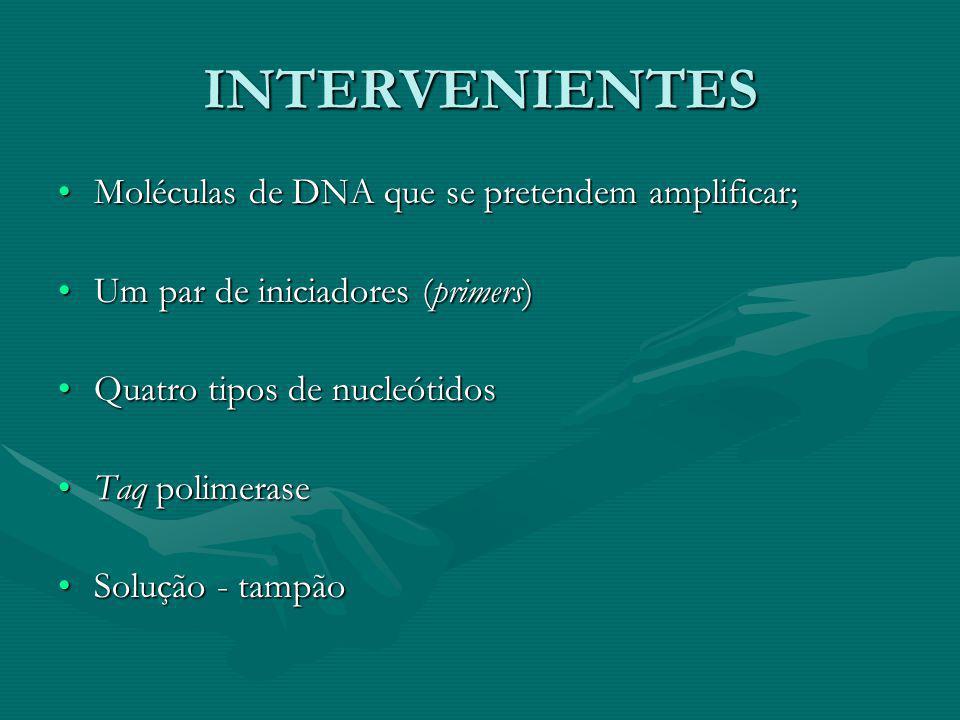 INTERVENIENTES Moléculas de DNA que se pretendem amplificar;Moléculas de DNA que se pretendem amplificar; Um par de iniciadores (primers)Um par de ini