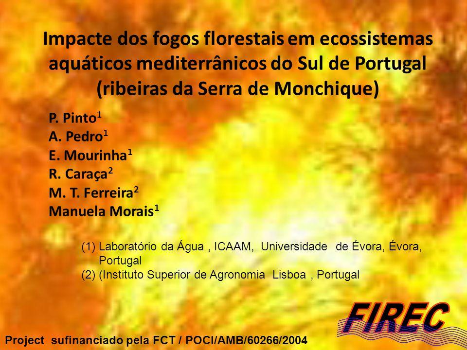 Impacte dos fogos florestais em ecossistemas aquáticos mediterrânicos do Sul de Portugal (ribeiras da Serra de Monchique) P. Pinto 1 A. Pedro 1 E. Mou