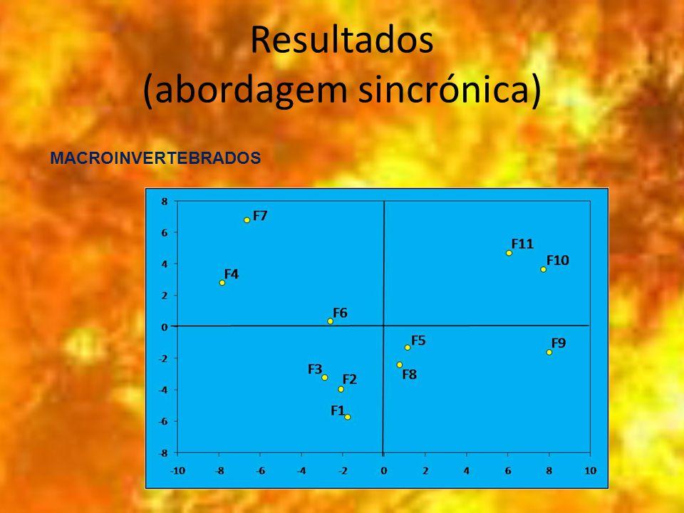 Resultados (abordagem sincrónica) MACROINVERTEBRADOS
