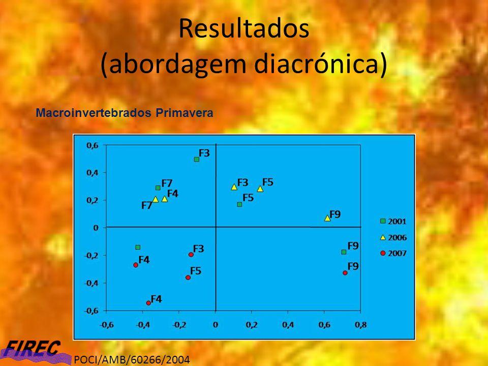Resultados (abordagem diacrónica) Macroinvertebrados Primavera POCI/AMB/60266/2004