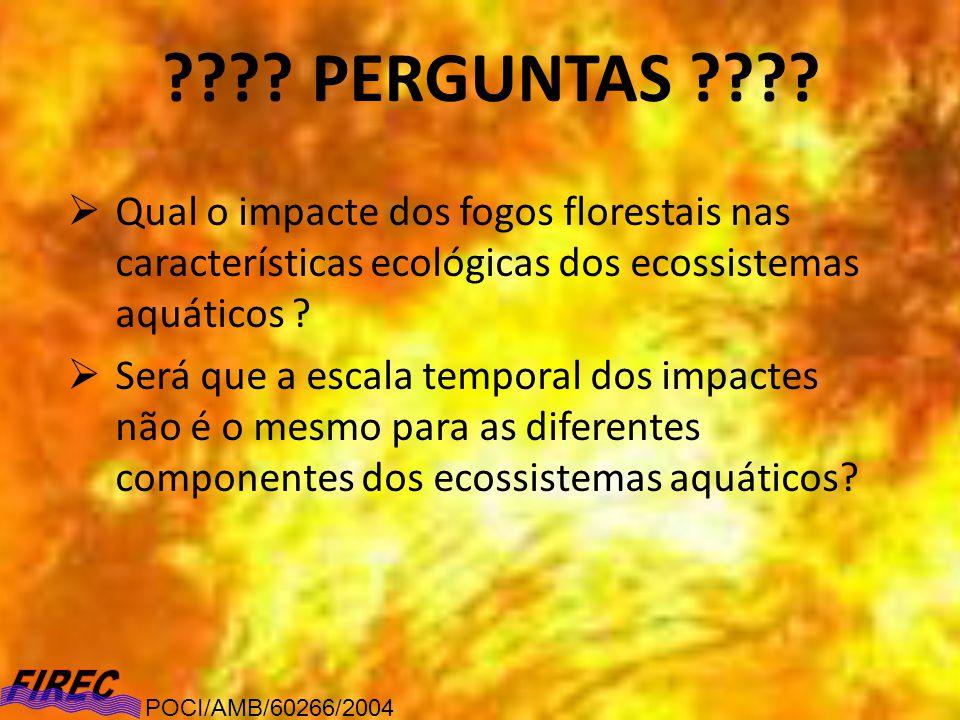 ???? PERGUNTAS ???? Qual o impacte dos fogos florestais nas características ecológicas dos ecossistemas aquáticos ? Será que a escala temporal dos imp
