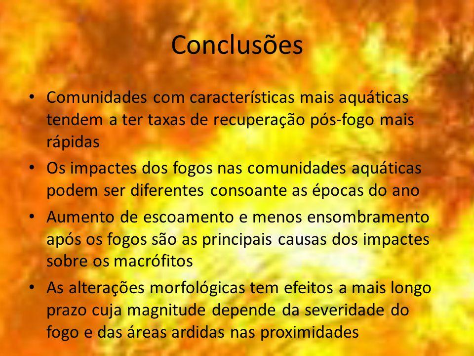 Conclusões Comunidades com características mais aquáticas tendem a ter taxas de recuperação pós-fogo mais rápidas Os impactes dos fogos nas comunidade