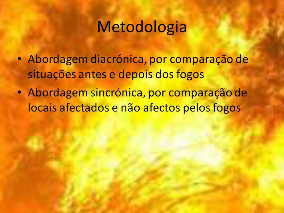 Metodologia Abordagem diacrónica, por comparação de situações antes e depois dos fogos Abordagem sincrónica, por comparação de locais afectados e não afectos pelos fogos