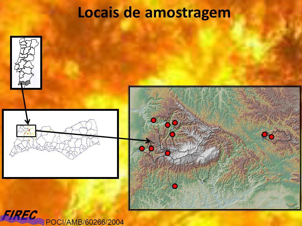Resultados (abordagem diacrónica) Percentagem de espécies sub- higrófilas POCI/AMB/60266/2004