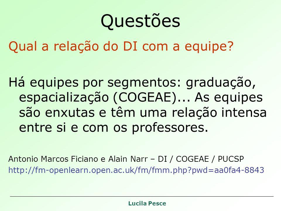 Lucila Pesce Questões Qual a relação do DI com a equipe? Há equipes por segmentos: graduação, espacialização (COGEAE)... As equipes são enxutas e têm