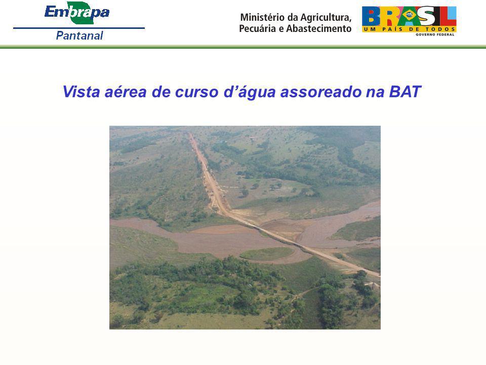 Vista aérea de curso dágua assoreado na BAT