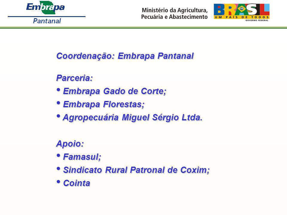 Coordenação: Embrapa Pantanal Parceria: Embrapa Gado de Corte; Embrapa Gado de Corte; Embrapa Florestas; Embrapa Florestas; Agropecuária Miguel Sérgio