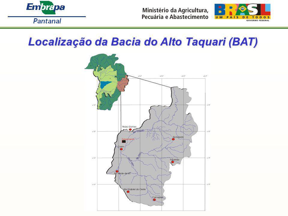 Resultados preliminares: A perda de solo, com a superfície do terreno sem vegetação, no período chuvoso, foi de 6,5 t/ha; A perda de solo, com a superfície do terreno sem vegetação, no período chuvoso, foi de 6,5 t/ha; As perdas de solo e água na Brachiaria brizantha bem manejada foram 60% menores que na Brachiaria decumbens degradada; As perdas de solo e água na Brachiaria brizantha bem manejada foram 60% menores que na Brachiaria decumbens degradada; As perdas de solo e água na Brachiaria brizantha bem manejada e com o emprego de terraços foram 90% menores que na Brachiaria decumbens degradada.