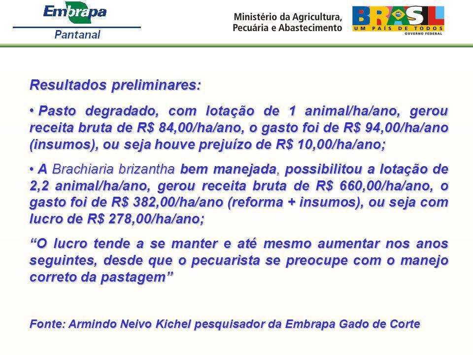 Resultados preliminares: Pasto degradado, com lotação de 1 animal/ha/ano, gerou receita bruta de R$ 84,00/ha/ano, o gasto foi de R$ 94,00/ha/ano (insu
