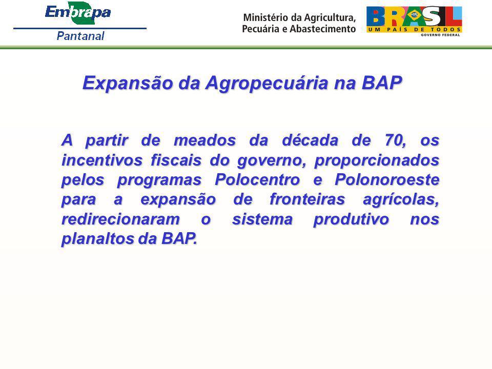 Expansão da Agropecuária na BAP A partir de meados da década de 70, os incentivos fiscais do governo, proporcionados pelos programas Polocentro e Polo