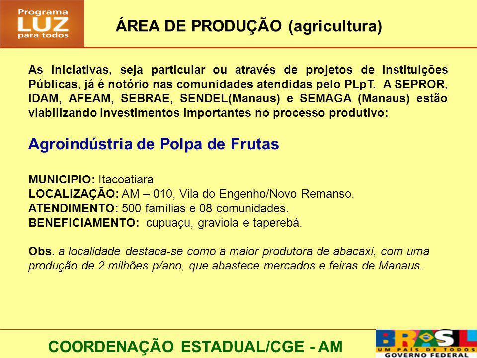 COORDENAÇÃO ESTADUAL/CGE - AM ÁREA DE PRODUÇÃO (agricultura) As iniciativas, seja particular ou através de projetos de Instituições Públicas, já é not