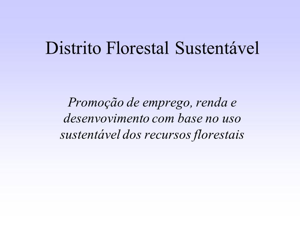 Distrito Florestal Sustentável Promoção de emprego, renda e desenvovimento com base no uso sustentável dos recursos florestais
