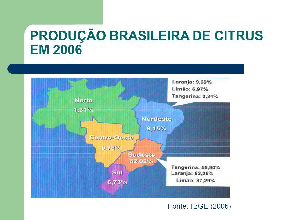 DESTINAÇÃO FINAL DO SUCO DE LARANJA NO MUNDO Fonte: Imbert (2006)
