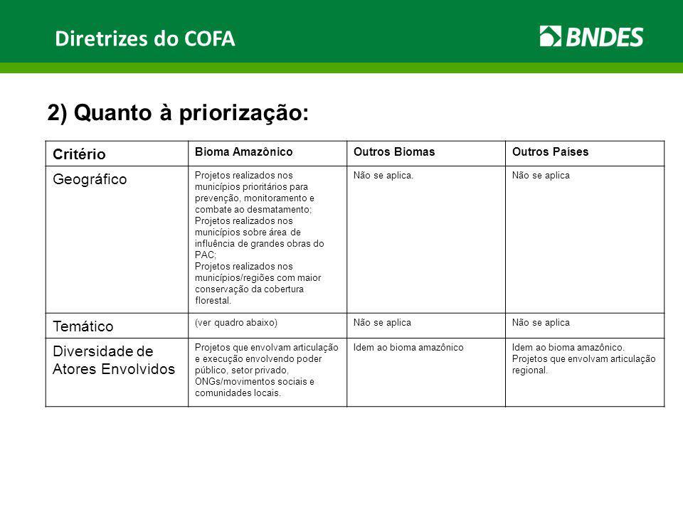 Diretrizes do COFA 2) Quanto à priorização: Critério Bioma AmazônicoOutros BiomasOutros Países Geográfico Projetos realizados nos municípios prioritár