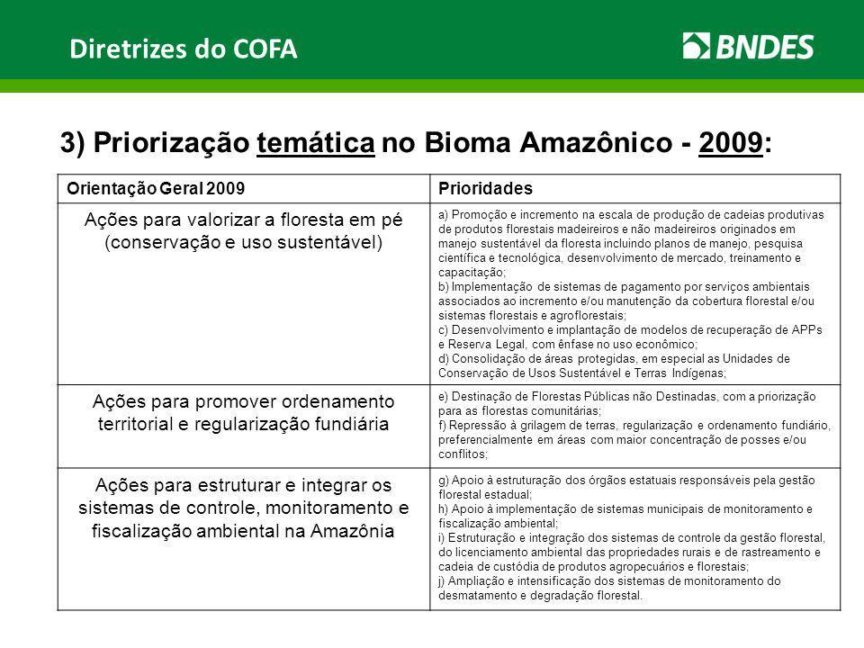Diretrizes do COFA 3) Priorização temática no Bioma Amazônico - 2009: Orientação Geral 2009Prioridades Ações para valorizar a floresta em pé (conserva