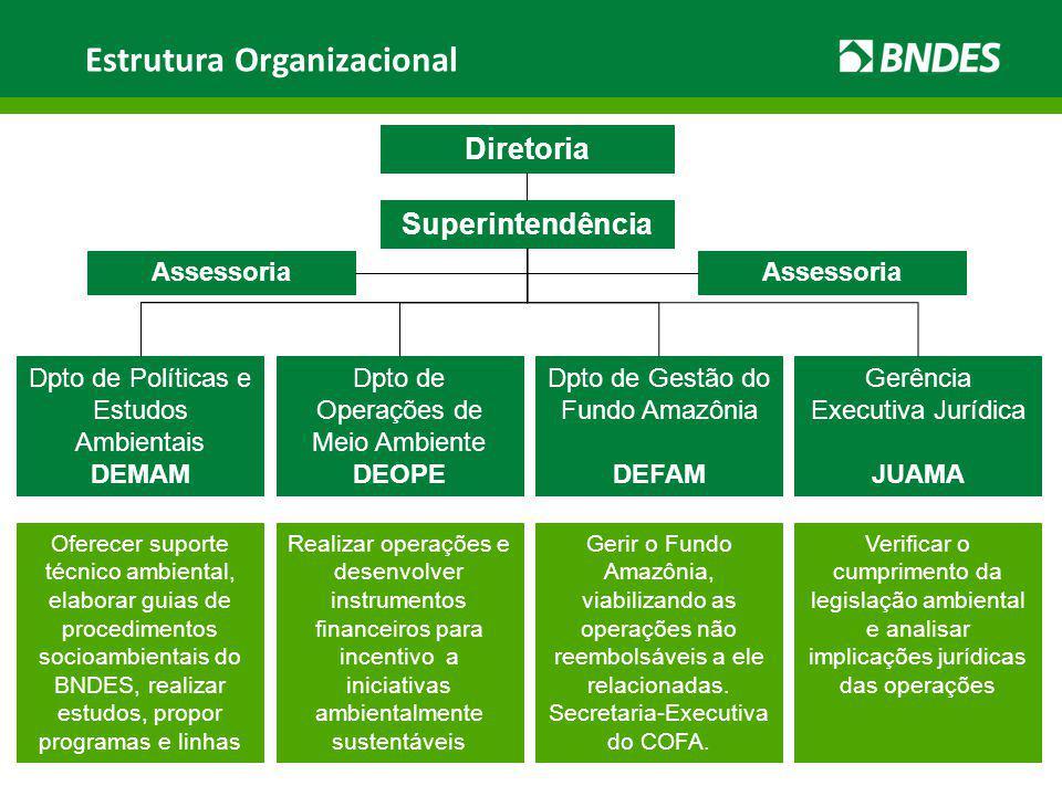 Diretoria Superintendência Dpto de Operações de Meio Ambiente DEOPE Dpto de Políticas e Estudos Ambientais DEMAM Dpto de Gestão do Fundo Amazônia DEFA