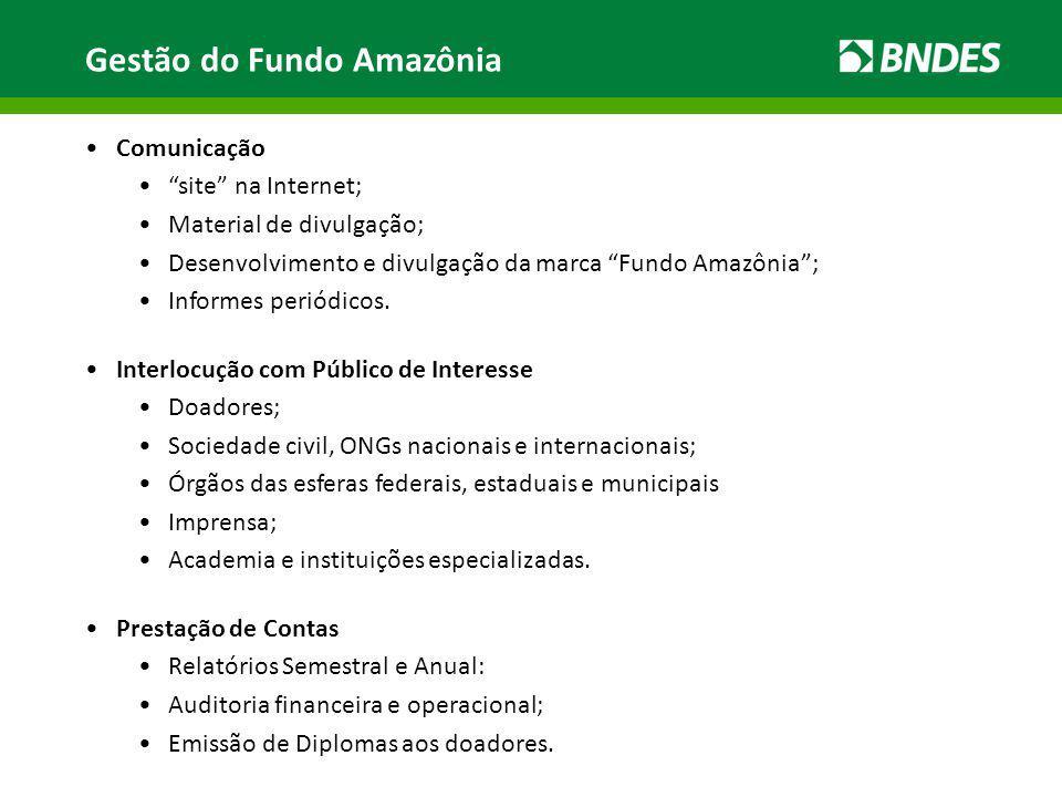 Gestão do Fundo Amazônia Comunicação site na Internet; Material de divulgação; Desenvolvimento e divulgação da marca Fundo Amazônia; Informes periódic