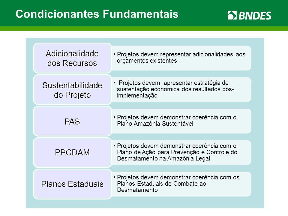 Condicionantes Fundamentais Sustentabilidade do Projeto PAS PPCDAM Planos Estaduais Adicionalidade dos Recursos
