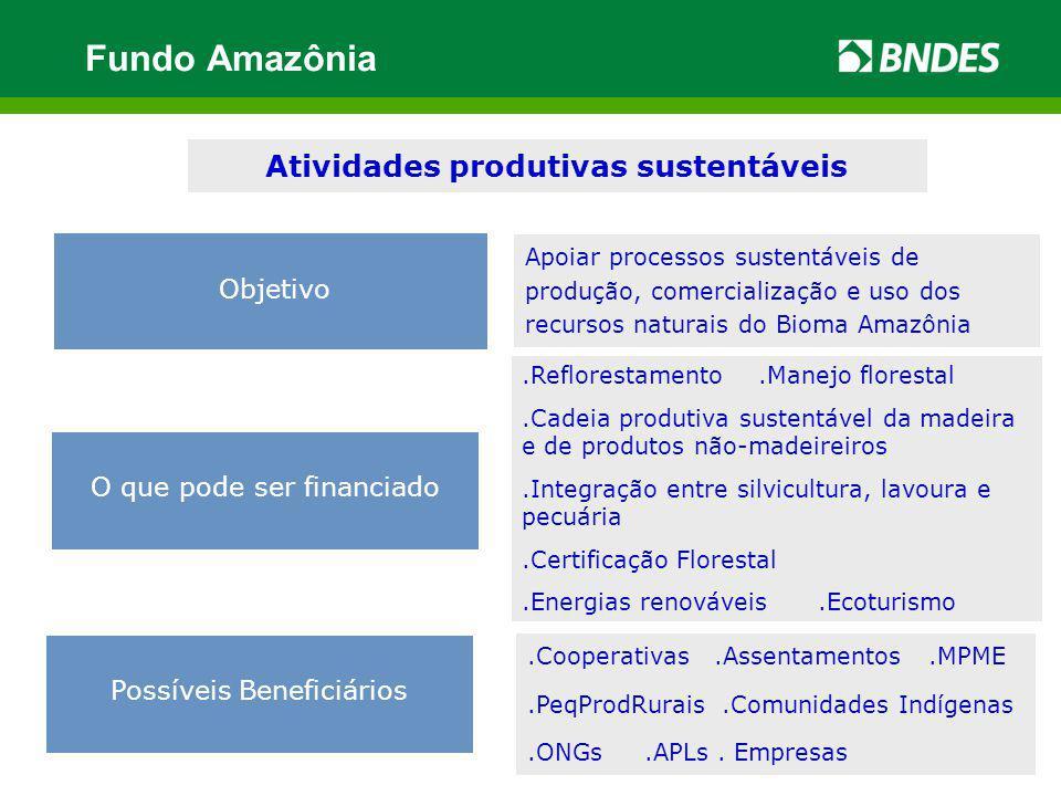 .Reflorestamento.Manejo florestal.Cadeia produtiva sustentável da madeira e de produtos não-madeireiros.Integração entre silvicultura, lavoura e pecuá