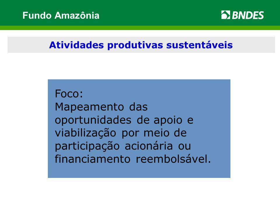 Modernização e desenvolvimento institucional Foco: Mapeamento das oportunidades de apoio e viabilização por meio de participação acionária ou financia