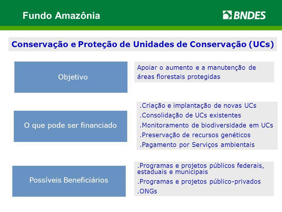 .Criação e implantação de novas UCs.Consolidação de UCs existentes.Monitoramento de biodiversidade em UCs.Preservação de recursos genéticos.Pagamento