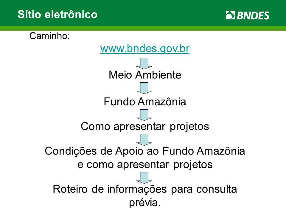 Sítio eletrônico Caminho : www.bndes.gov.br Meio Ambiente Fundo Amazônia Como apresentar projetos Condições de Apoio ao Fundo Amazônia e como apresent