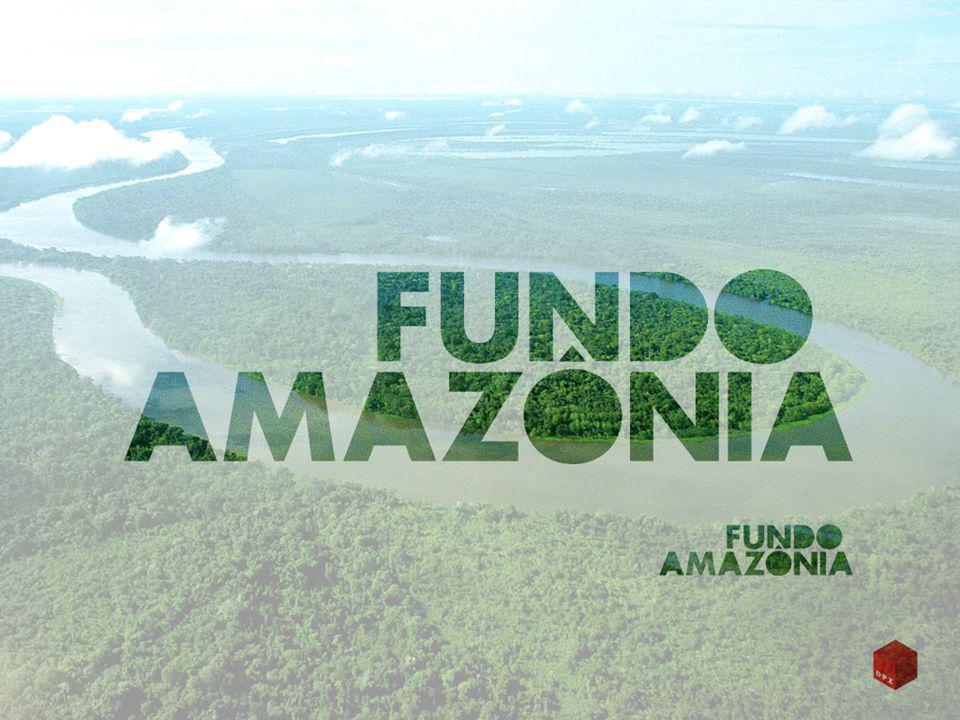 Restrições do uso de recursos CritérioBioma Amazônico, outros biomas e outros Países DiáriasNão poderão ser pagas diárias para funcionários públicos (não se aplica esta restrição a atividades de pesquisa envolvendo instituições publicas de pesquisa).