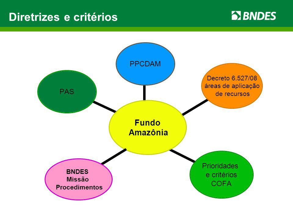 Governança Diretrizes e Critérios para a aplicação de recursos Comitê Orientador do Fundo Amazônia Diretrizes e Critérios para a aplicação de recursos Comitê Orientador do Fundo Amazônia Implementação de projetos Governos, ONGs, iniciativa privada Implementação de projetos Governos, ONGs, iniciativa privada Aprovação e monitoramento de projetos BNDES Aprovação e monitoramento de projetos BNDES Cálculo das Taxas de desmatamento Instituto Nacional de Pesquisas Espaciais – INPE/MCT Cálculo das Taxas de desmatamento Instituto Nacional de Pesquisas Espaciais – INPE/MCT Cálculo das Emissões evitadas Serviço Florestal Brasileiro – SFB/MMA Cálculo das Emissões evitadas Serviço Florestal Brasileiro – SFB/MMA Certificação das emissões evitadas Comitê Técnico do Fundo Amazônia Certificação das emissões evitadas Comitê Técnico do Fundo Amazônia Captação de recursos - BNDES Doadores Governos, Empresas, ONGs, Pessoas Físicas Doadores Governos, Empresas, ONGs, Pessoas Físicas Auditoria independente dos resultados obtidos Auditores independentes Auditoria independente dos resultados obtidos Auditores independentes