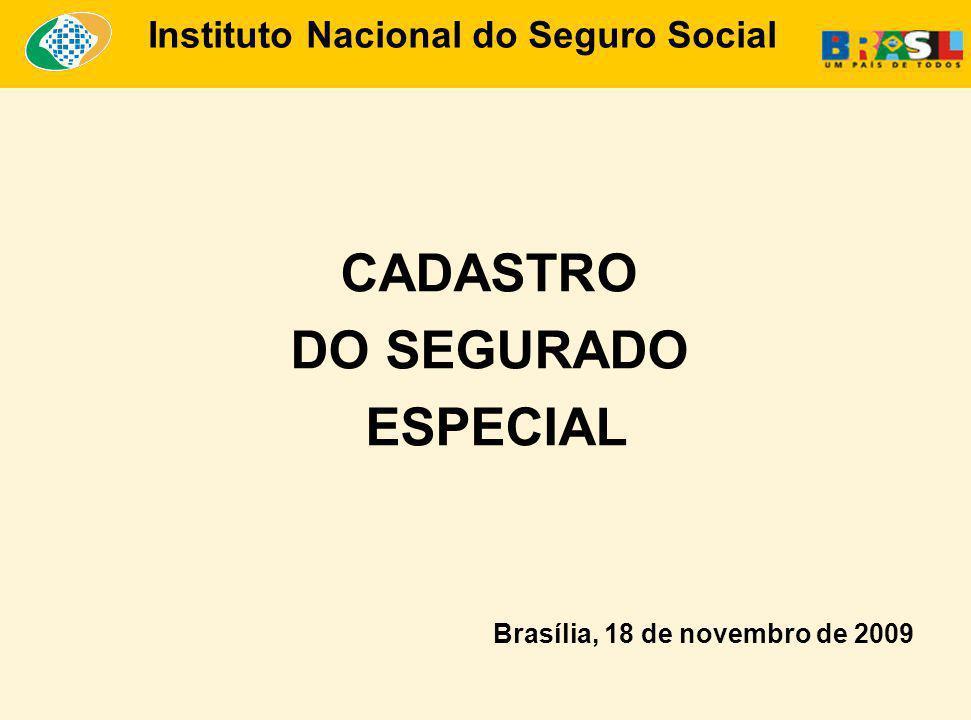 CADASTRO DO SEGURADO ESPECIAL Brasília, 18 de novembro de 2009 Instituto Nacional do Seguro Social