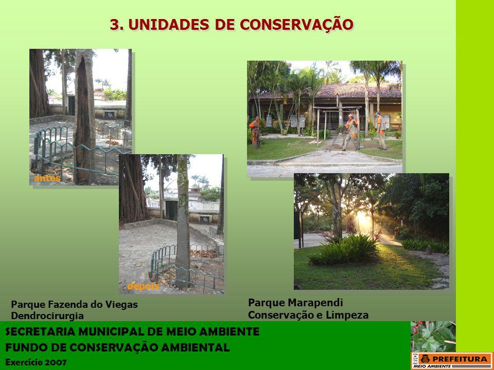 SECRETARIA MUNICIPAL DE MEIO AMBIENTE FUNDO DE CONSERVAÇÃO AMBIENTAL Exercício 2007 3. UNIDADES DE CONSERVAÇÃO Parque Fazenda do Viegas Dendrocirurgia