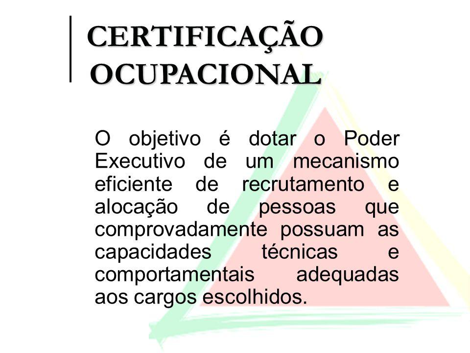 O objetivo é dotar o Poder Executivo de um mecanismo eficiente de recrutamento e alocação de pessoas que comprovadamente possuam as capacidades técnic