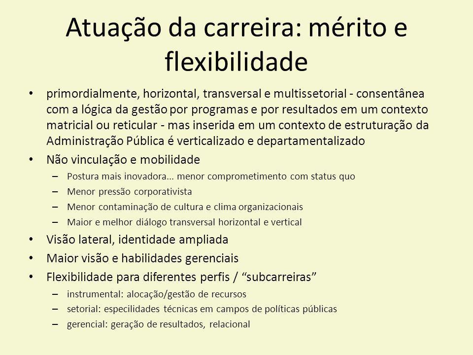 Atuação da carreira: mérito e flexibilidade primordialmente, horizontal, transversal e multissetorial - consentânea com a lógica da gestão por program