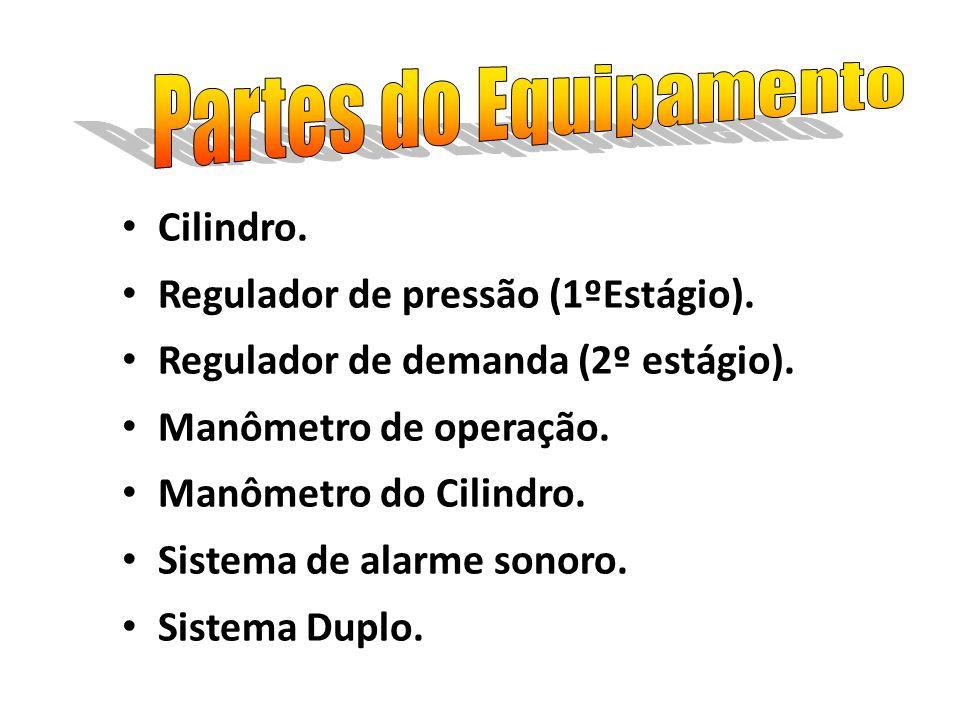 Cilindro. Regulador de pressão (1ºEstágio). Regulador de demanda (2º estágio). Manômetro de operação. Manômetro do Cilindro. Sistema de alarme sonoro.