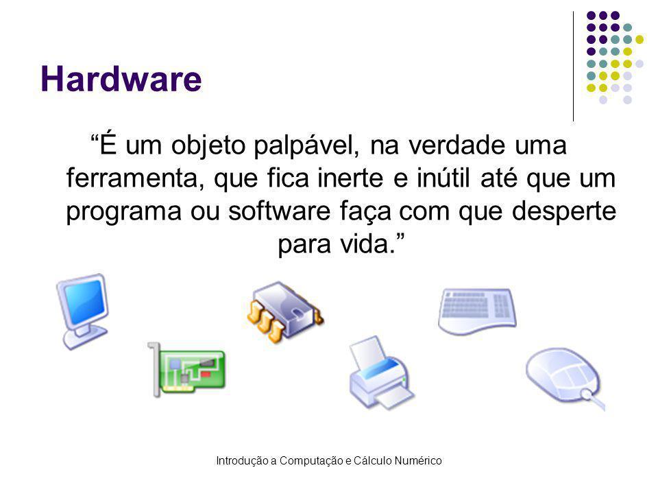 Introdução a Computação e Cálculo Numérico Hardware É um objeto palpável, na verdade uma ferramenta, que fica inerte e inútil até que um programa ou software faça com que desperte para vida.