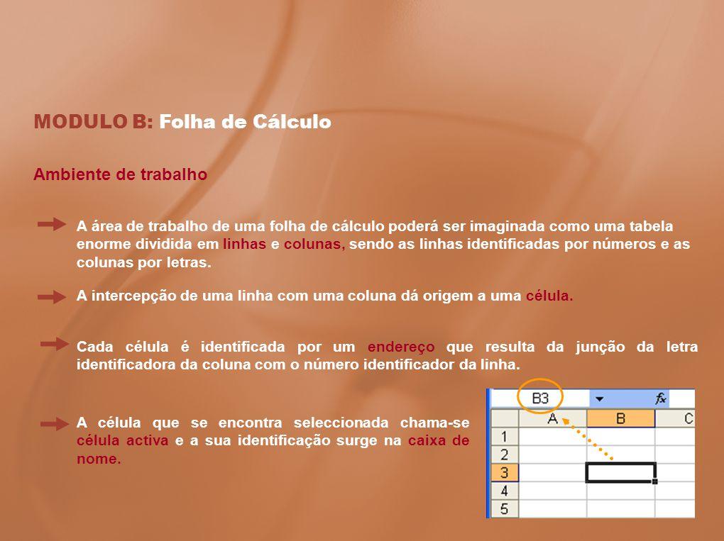 MODULO B: Folha de Cálculo Ambiente de trabalho Cada célula é identificada por um endereço que resulta da junção da letra identificadora da coluna com