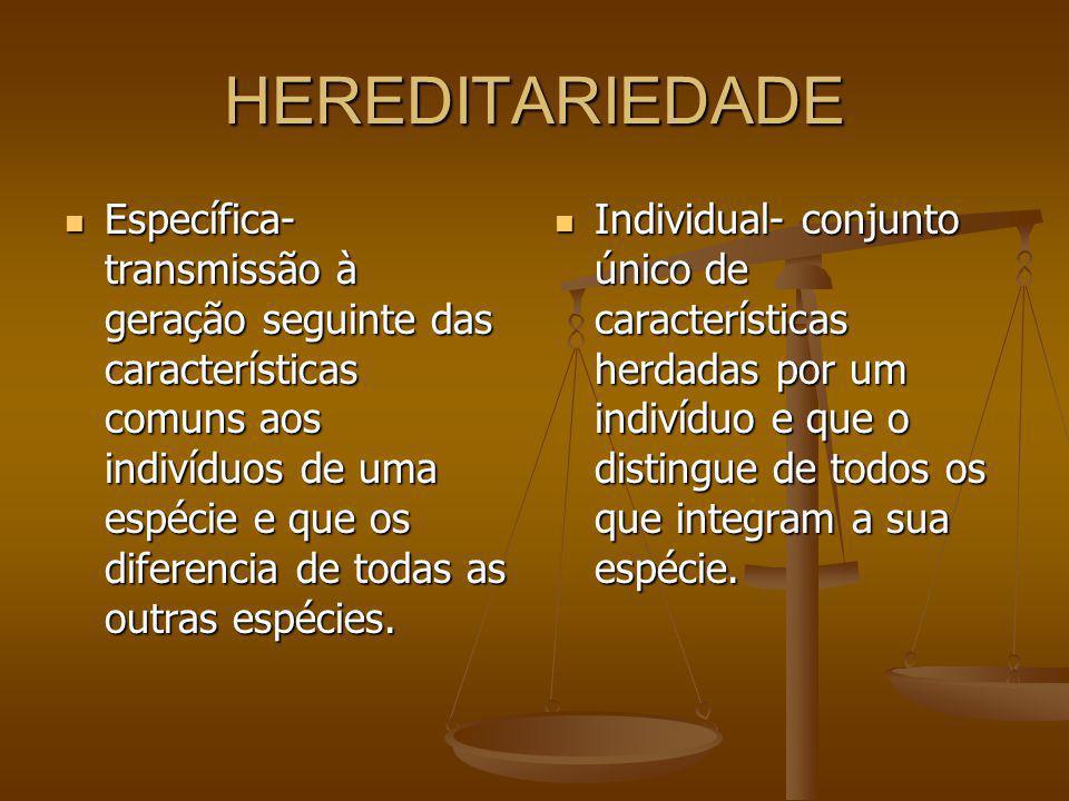HEREDITARIEDADE Específica- transmissão à geração seguinte das características comuns aos indivíduos de uma espécie e que os diferencia de todas as ou