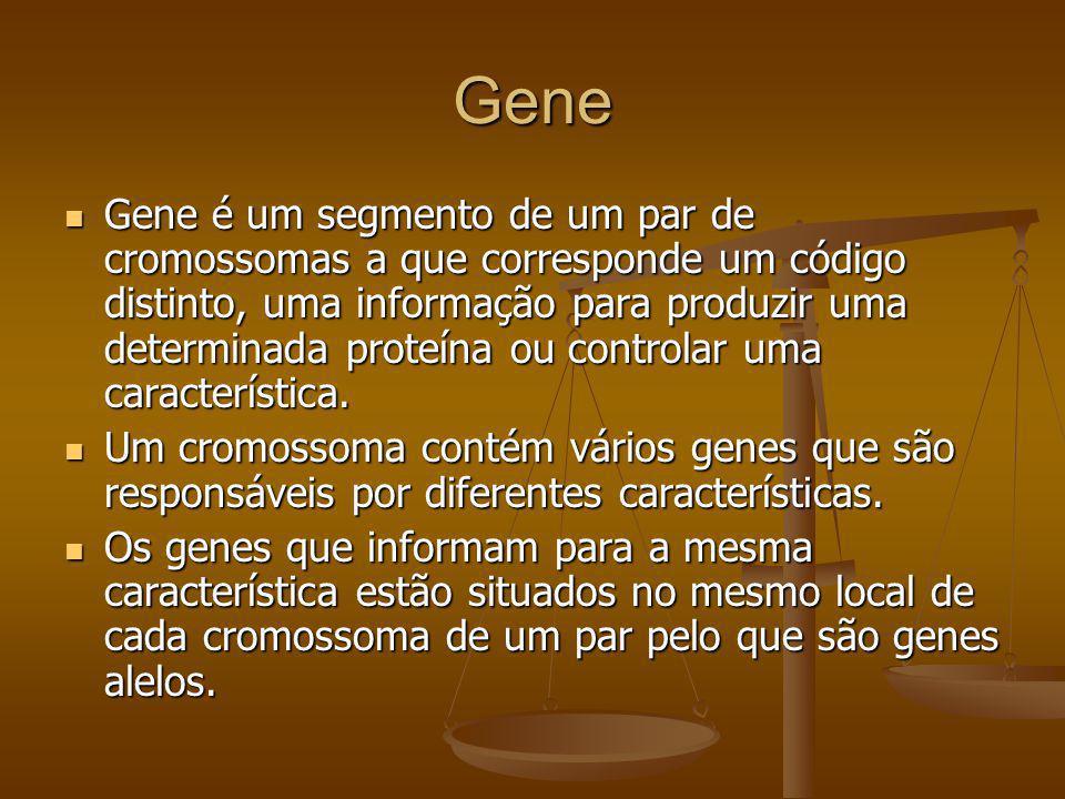 Gene Gene é um segmento de um par de cromossomas a que corresponde um código distinto, uma informação para produzir uma determinada proteína ou contro
