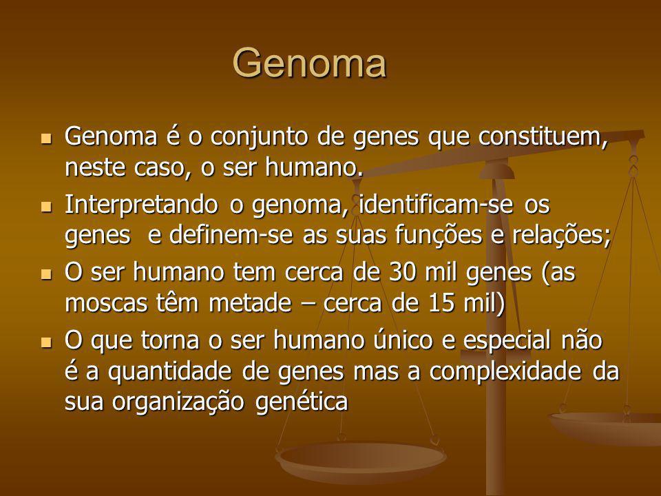 Genoma Genoma é o conjunto de genes que constituem, neste caso, o ser humano. Genoma é o conjunto de genes que constituem, neste caso, o ser humano. I