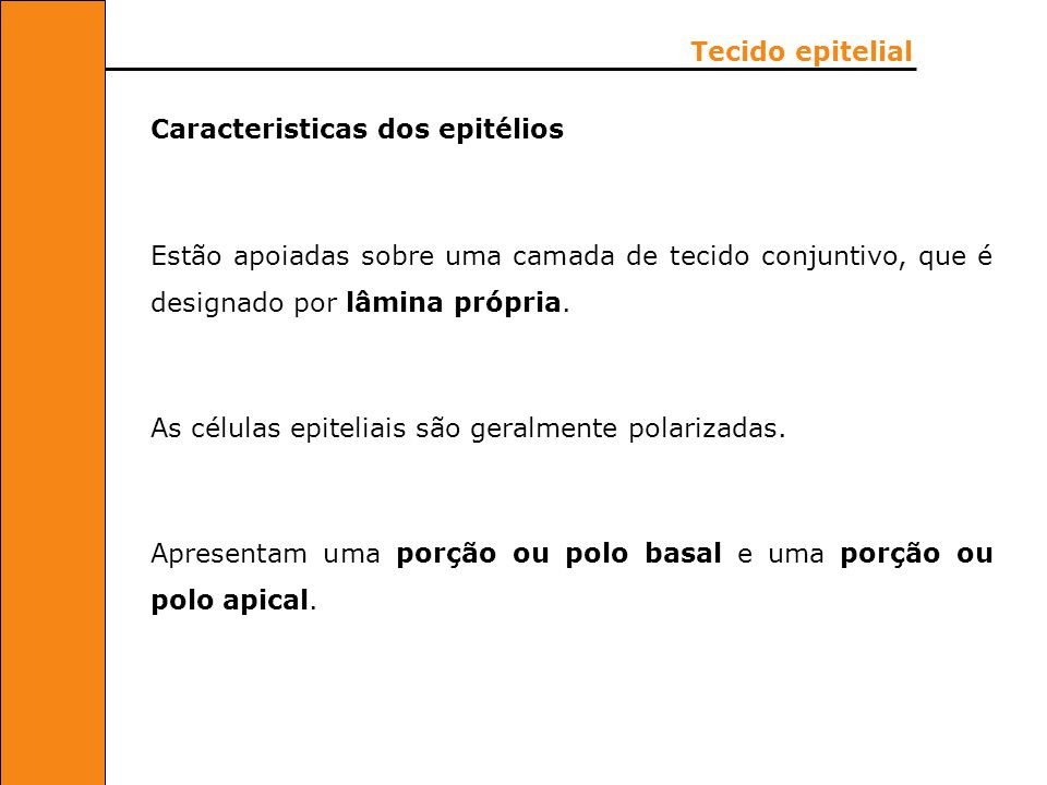 Células natural Killer (NK).