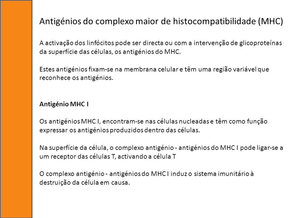 Antigénios do complexo maior de histocompatibilidade (MHC) A activação dos linfócitos pode ser directa ou com a intervenção de glicoproteínas da super