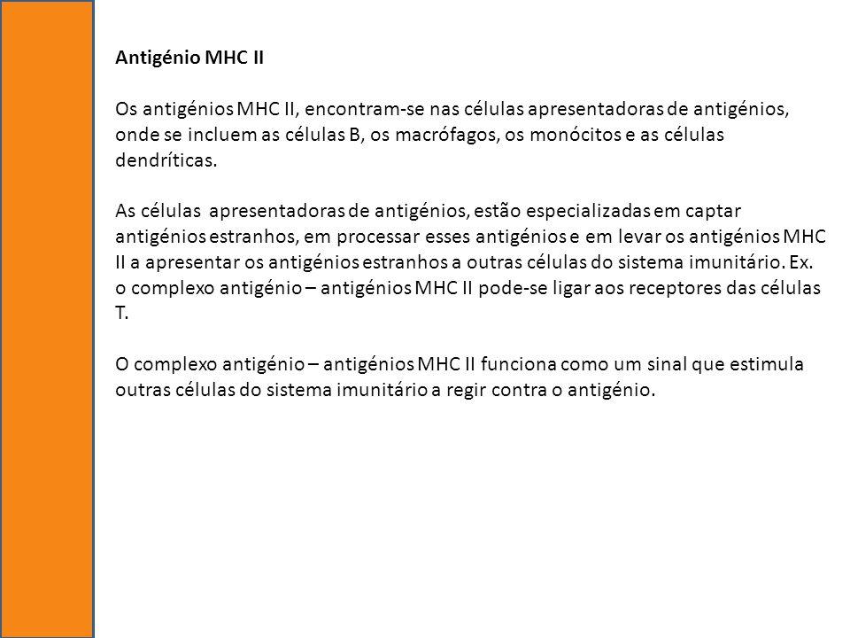 Antigénio MHC II Os antigénios MHC II, encontram-se nas células apresentadoras de antigénios, onde se incluem as células B, os macrófagos, os monócito