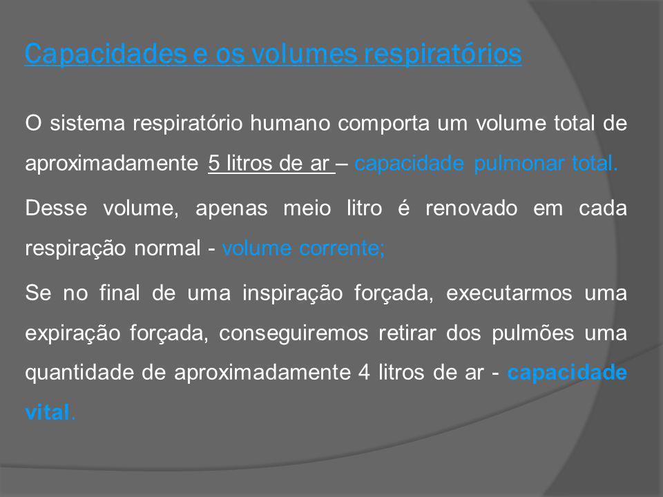 Capacidades e os volumes respiratórios O sistema respiratório humano comporta um volume total de aproximadamente 5 litros de ar – capacidade pulmonar