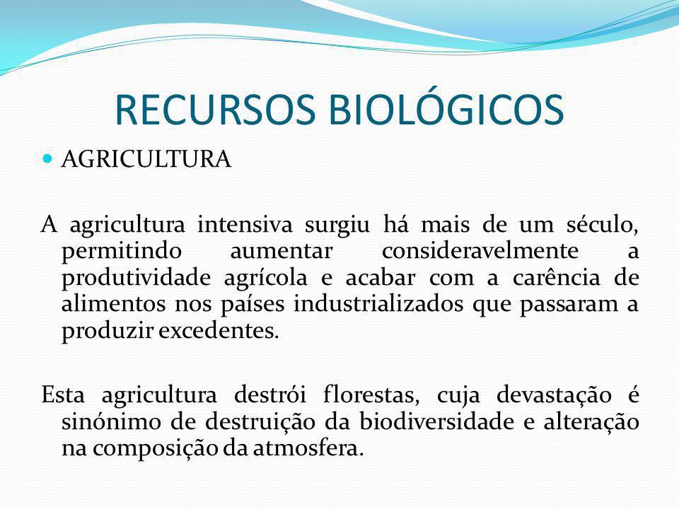 RECURSOS BIOLÓGICOS AGRICULTURA A agricultura intensiva surgiu há mais de um século, permitindo aumentar consideravelmente a produtividade agrícola e acabar com a carência de alimentos nos países industrializados que passaram a produzir excedentes.